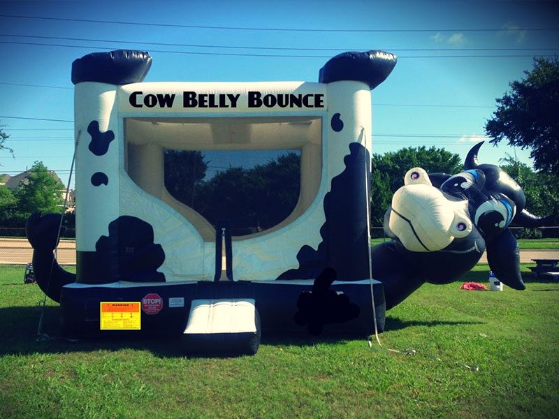 Cow belly Bouncer